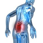 Preventing Lower Back Pain through Exercise